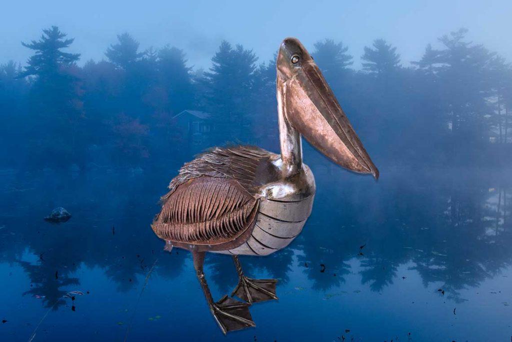 Pelican resting at lake